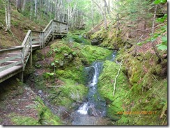 Fundy NP walk