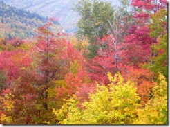 White Mtns NH Oct.7